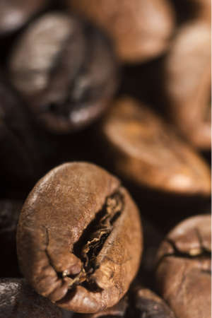 coffee bean as food ingredient