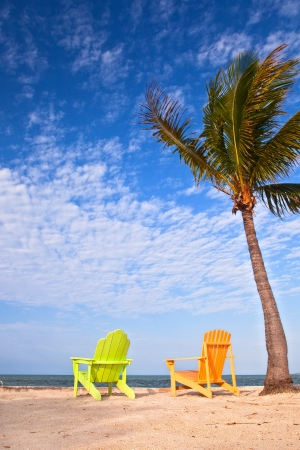 Summer scene with colorful lounge chairs on a tropical beach in Florida with palm tree and blue sky