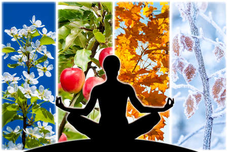 Foto de Female yoga figure silhouette against collage of four pictures representing each season: spring, summer, autumn and winter. - Imagen libre de derechos