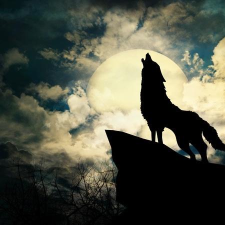 wolf wall murals wolves wallpaper