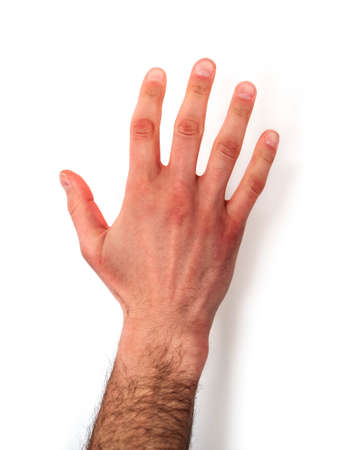 A hairy male hand showing five fingers, isolated on white handground.
