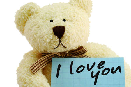 Front view of teddy bear toy with