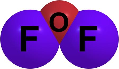 Foxterrier2005160100002