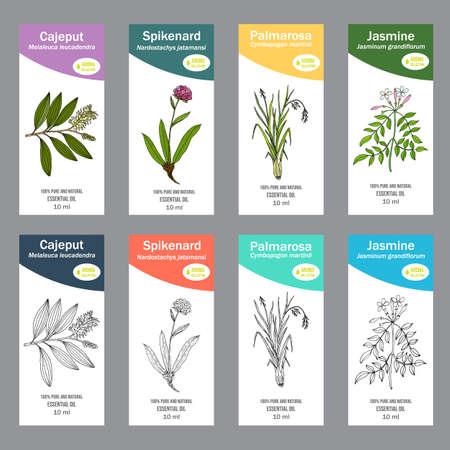 Illustration pour Set of essential oil labels - image libre de droit