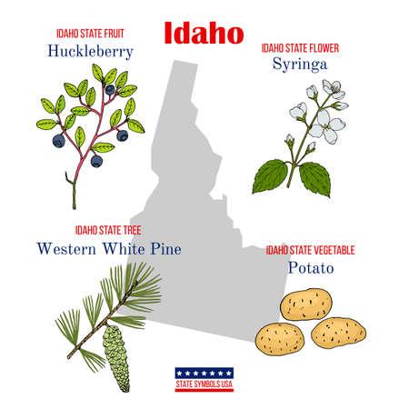 Illustration pour Idaho. Set of USA official state symbols - image libre de droit