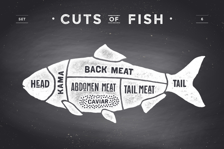 Illustration pour Cut of meat set. Poster Butcher diagram and scheme - Fish. Vintage typographic  on a black chalkboard background. illustration - image libre de droit