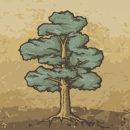 Hand drawn colored oak tree with rough woodcut shading on grunge beige