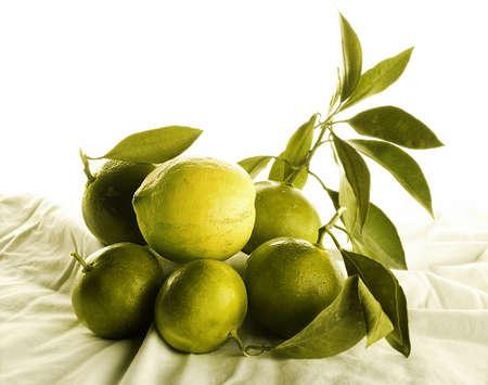 Gruene Limetten und eine gelbe Zitrone