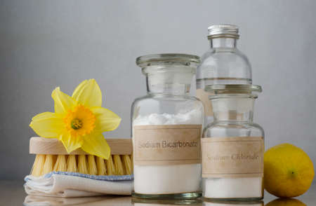 Still life of natural cleaning choices.  Sodium bicarbonate and salt in apothecary jars, white vinegar behind them and a lemon to the right.  A folded cloth and wooden brush on the left are topped with a daffodil to signify Spring cleaning.