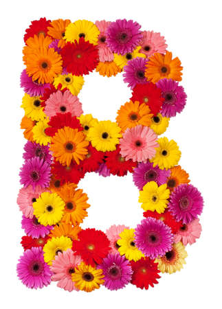 Letter B - flower alphabet isolated on white background
