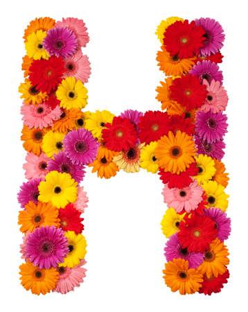 Letter H - flower alphabet isolated on white background