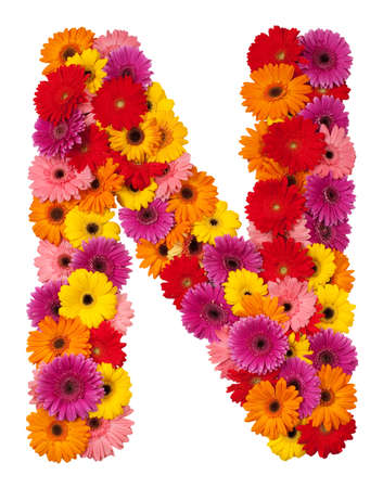 Letter N - flower alphabet isolated on white background