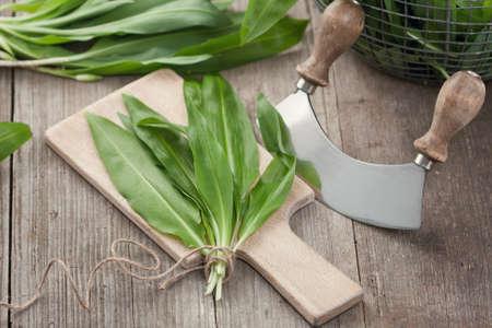 Freshly harvested wild garlic on cutting board