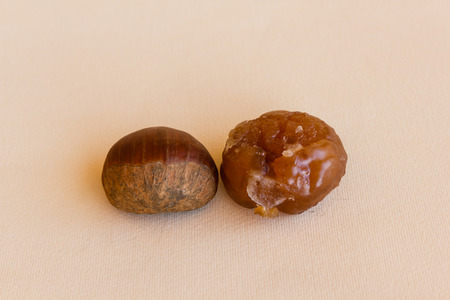 the chestnut worked Becomes marron glacÚ