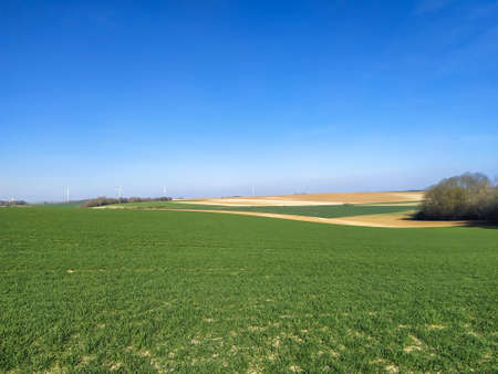 Photo pour fields in spring in northern France - image libre de droit