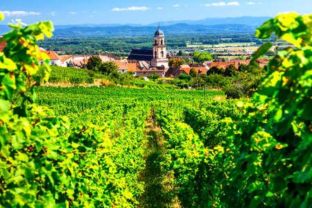 Foto de Picturesque Kayserberg village, Alsace region, view with vineyards, France. - Imagen libre de derechos