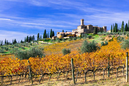 Beautiful Banfi castle, view with vineyards, Tuscany, Italy.
