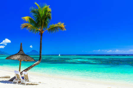 Photo pour Beautiful beach of Mauritius island, view from the azure sea and palm tree. - image libre de droit