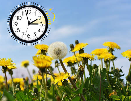 Photo for Summer Daylight Saving Time (DST). Blue sky with yellow dandelions. Turn time forward (+1h). - Royalty Free Image