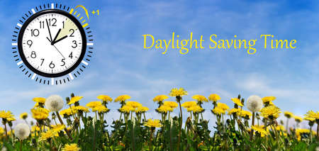 Photo pour Summer Daylight Saving Time (DST). Blue sky with yellow dandelions. Turn time forward (+1h). - image libre de droit