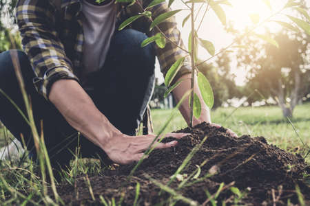 Foto de Young man planting the tree while Watering a tree working in the garden as save world concept, nature, environment and ecology. - Imagen libre de derechos