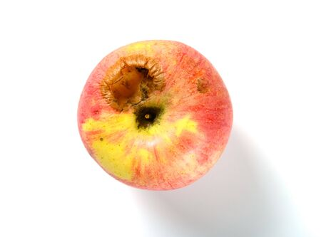 Photo for top view ripe apple bited by insect - Royalty Free Image