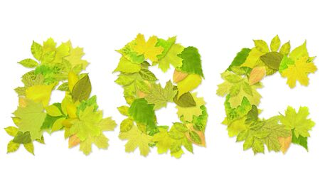 Alphabet - letters with a green leaves. Set 1