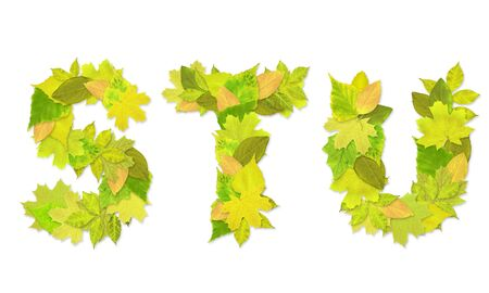 Alphabet - letters with a green leaves. Set 7