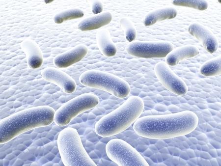 Colony of pathogen bacteria - 3d render