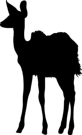 Silhouette of a standing kudu antelope, hand drawn vector illustration isolated on white background.