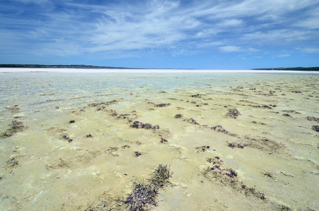 Australia, Hutt lagoon, a salt lake also named pink lake