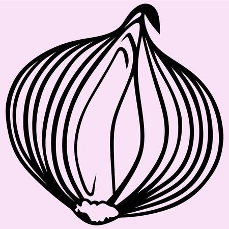 Bulb onion vector silhouette isolated