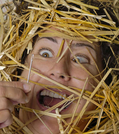 Woman finds a needle in a haystack!