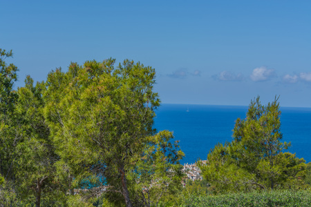 Panorama of the bay Paguera photographed from the mountain in Costa de la Calma.