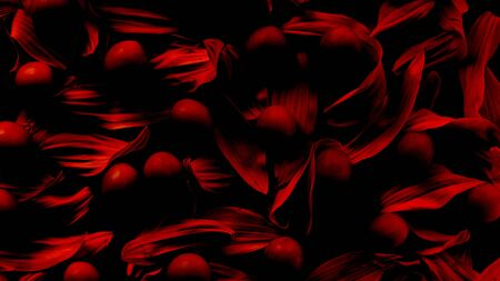 Photo pour romatic sexy abstract red background of petals and berries - image libre de droit