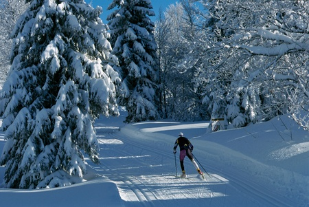 Skier practicing skating on a track in the middle of the snowy forest, in Le Revard, France