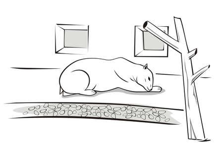Vector illustration of a sad, polar bear in the zoo.