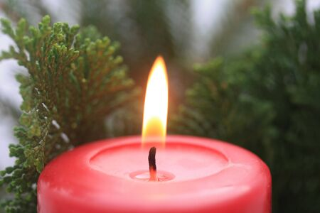Close up of a red candle and some christmas tree green