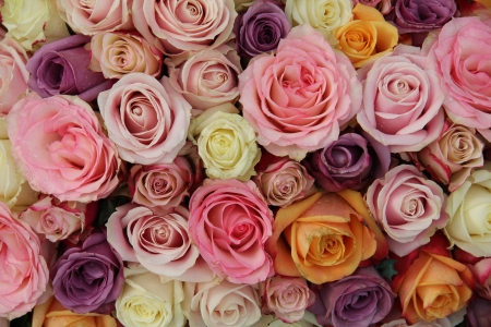 Mixed roses in various pastel colors in a wedding arrangement