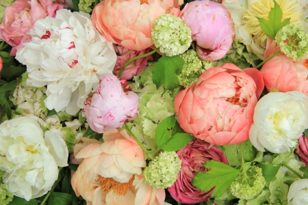 Photo for Peonies in various shades of pink and white in a floral wedding arrangement - Royalty Free Image