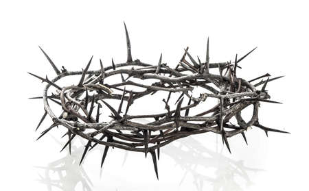 Crown of thorns on white