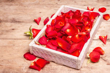 Photo pour Fresh red roses petals in wooden crates. Fragrant flowers, trendy hard light, dark shadow. Natural spa concept or preparation rose water. Old wooden table, place for text - image libre de droit