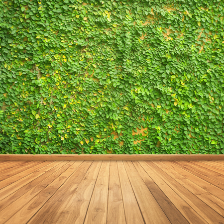 Photo pour Leaves on wall and wood wall for background - image libre de droit