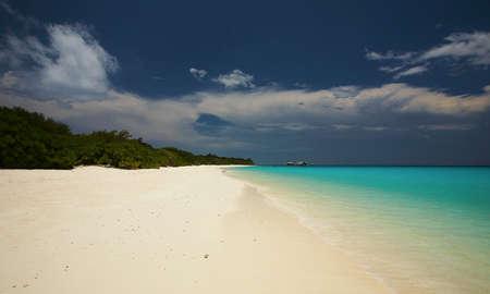 Tropical ocean beach.