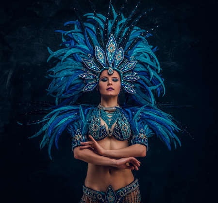 Photo pour Beautiful dancer is standing crosses her hands. She is wearing blue feather costume. - image libre de droit