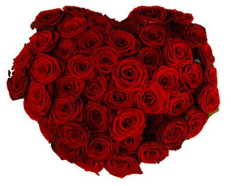 Heart made of beautiful red roses isolated on white