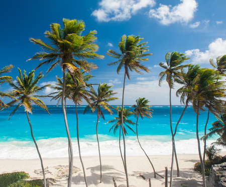 Bottom Bay is one of the most beautiful beaches on the Caribbean island of Barbados  It is a tropical paradise with palms hanging over turquoise sea