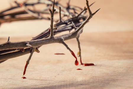 Foto de Crown of thorns with blood dripping. Christian concept of suffering. - Imagen libre de derechos