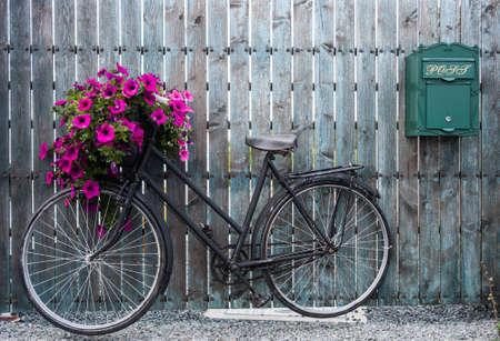 Photo pour old vintage bicycle with flower basket - image libre de droit