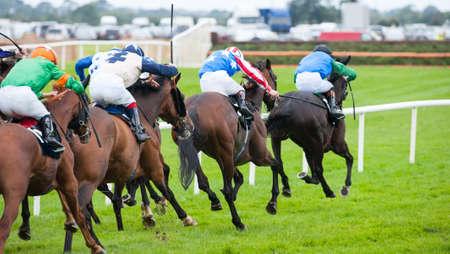 Race horses running towards the finish line